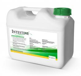 Intestine-kanister-5L