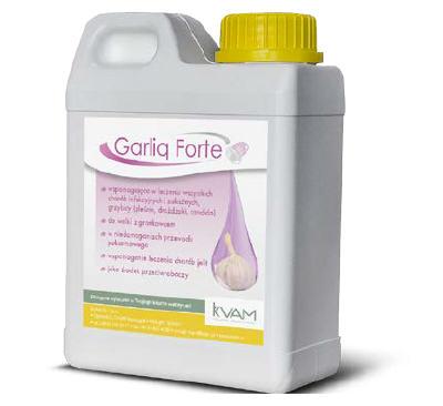 garlicforte
